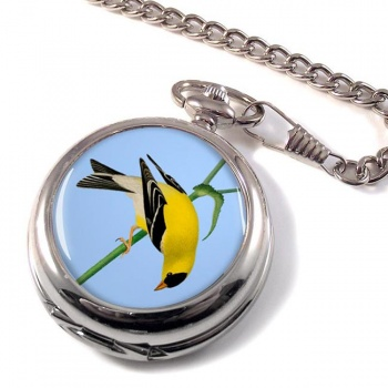 American Goldfinch Pocket Watch