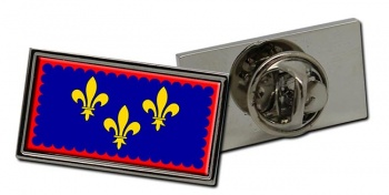 Anjou (France) Flag Pin Badge