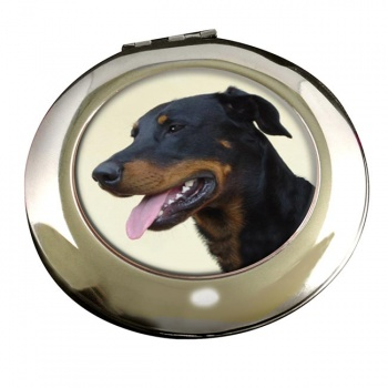Beauceron Mirror