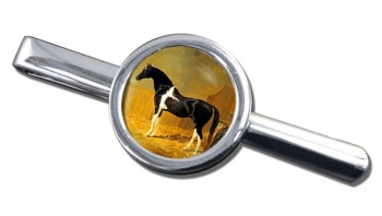 Pie-bald Horse by Herring Tie Clip