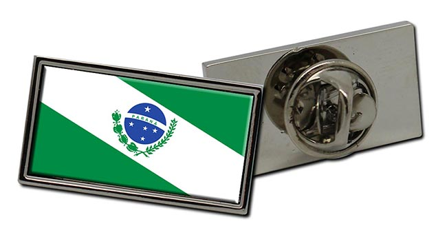 Parana (Brasil) Flag Pin Badge