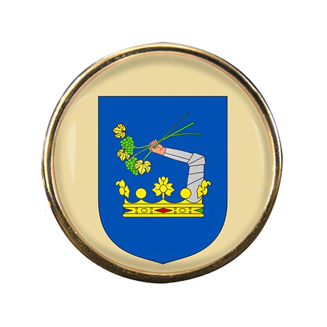 Somogy County Round Pin Badge