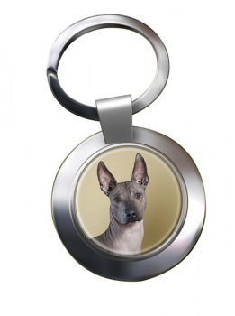 Mexican Hairless Dog Metal Key Ring