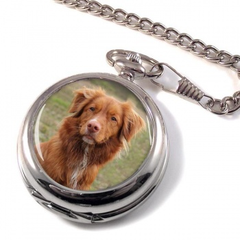Nova Scotia Duck Tolling Retriever Pocket Watch