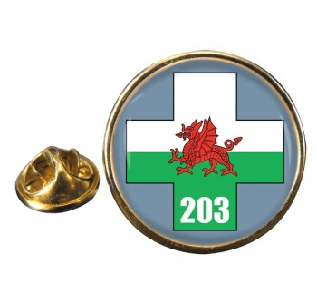 203 Field Hospital Round Pin Badge