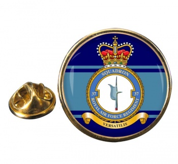 Royal Air Force Regiment No. 37 Round Pin Badge