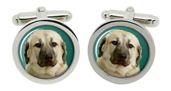 Anatolian Shepherd Dog Cufflinks in Chrome Box