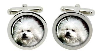 Bichon Bolegnese Dog Cufflinks in Chrome Box
