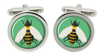 Bumble Bee Cufflinks in Chrome Box
