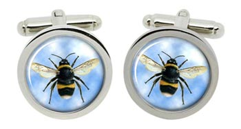 Bumblebee Cufflinks in Chrome Box