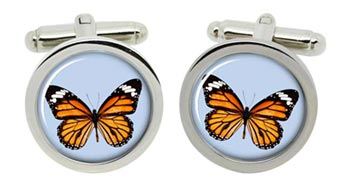 Butterfly Cufflinks in Chrome Box