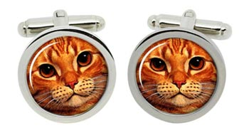 Ginger Cat Cufflinks in Chrome Box