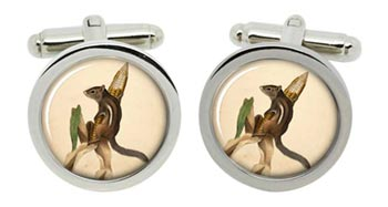 Chipmunk Cufflinks in Chrome Box