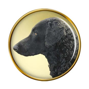 Curly Coated Retriever Pin Badge