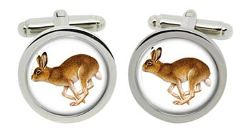 Hare Cufflinks in Chrome Box