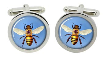 Honey Bee (Honeybee) Cufflinks in Chrome Box