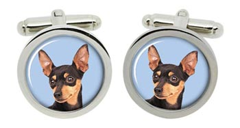 Miniature Pinscher Cufflinks in Chrome Box