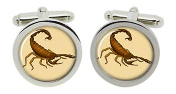 Scorpion Cufflinks in Chrome Box