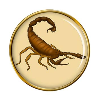 Scorpion Pin Badge