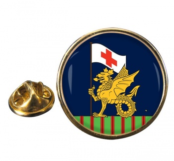 243 Field Hospital Round Pin Badge