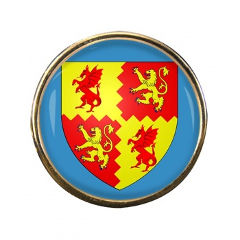Carmarthenshire Round Pin Badge