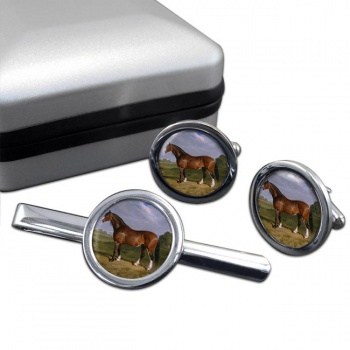 A Clydesdale Stallion by Herring  Cufflink and Tie Clip Set