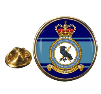 Electronic Warfare Operational Support Establishment (Royal Air Force) Round Pin Badge
