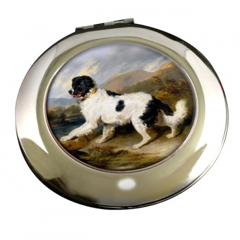 Lion a Newfoundland Dog by Landseer Mirror