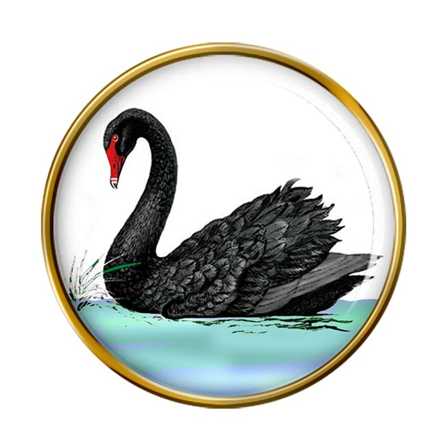 Black Swan Pin Badge