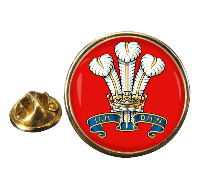 The Prince Of Wales's Division (POW) British Army Round Pin Badge