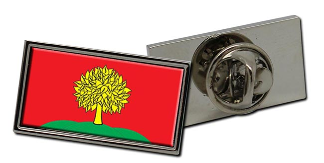 Lipetsk Oblast Flag Pin Badge