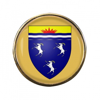 Merionethshire Round Pin Badge