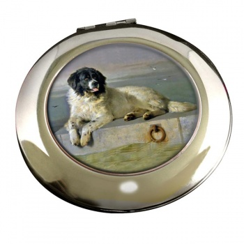 Newfoundland Dog by Landseer Mirror