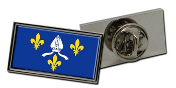 Saintonge (France) Flag Pin Badge