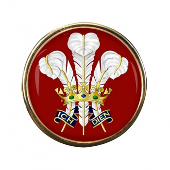 Surrey Feathers Round Pin Badge